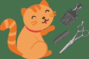 Уход за шерстью котов и кошек