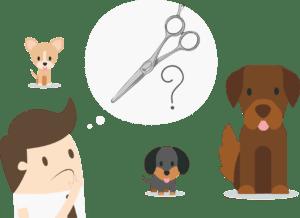 Зачем стричь собаку?